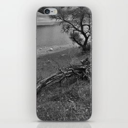 Growth and Decay iPhone Skin
