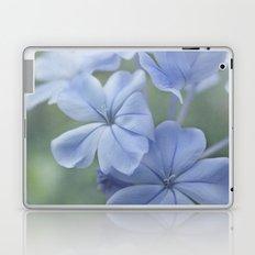 Spring's Sonnet Laptop & iPad Skin