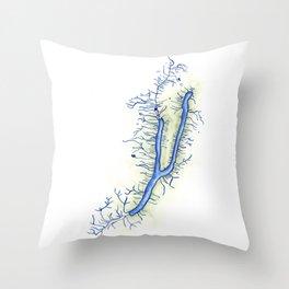 Keuka Lake Throw Pillow