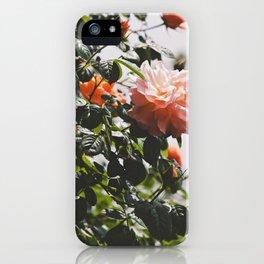 Field of Flowers 09 iPhone Case