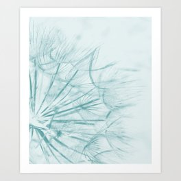 Dandelion In Blue Art Print