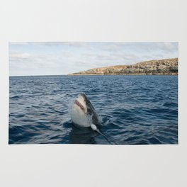 Great White Shark Carcharadon carcharias Rug