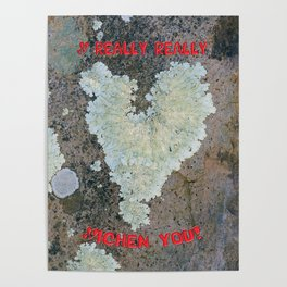 I Really Really Lichen You Poster