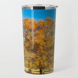 Park autumn landscape with autumn trees and fallen autumn leaves. Travel Mug