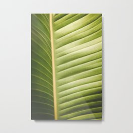 Retro Palm Leaf Abstract Metal Print