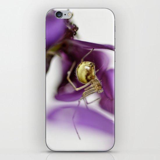 Spiderman... iPhone & iPod Skin