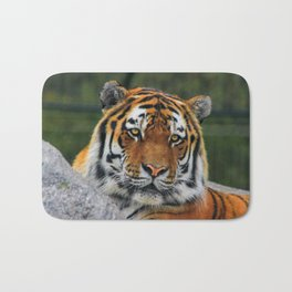 Amur tiger portrait Bath Mat