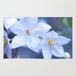 Jasmine Nightshade Flowers #3 #floral #art #society6 Rug