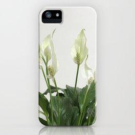 Spathiphyllum iPhone Case