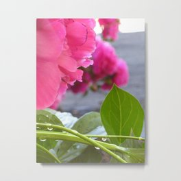 Flowers after the rain Metal Print