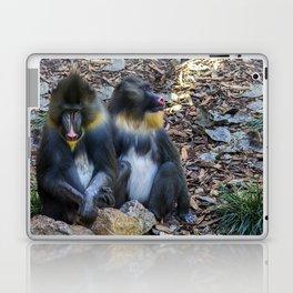 Monkeys - Mandrill Laptop & iPad Skin