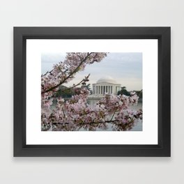 Jeffersonian Cherry Blossoms Framed Art Print