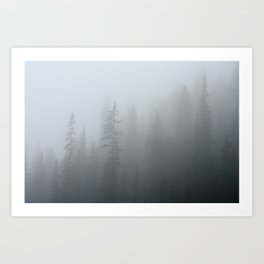 Ghost Pines - Forest Fog Photograph, Tree Photo Print, Nature Photography Art Print