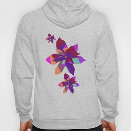Multi Colored Red Purple Orange Geometric Abstact Hoody