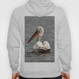 The Sea Breeze Blows The Pelican Where He Wants To Go Hoody