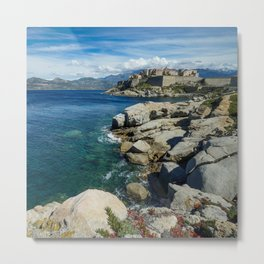 Flowers on the rocks Metal Print