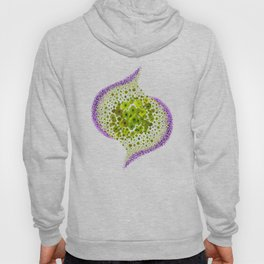Paths of Color [green & purple] Hoody