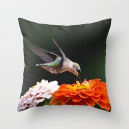 Hummingbird and Flowers Throw Pillow