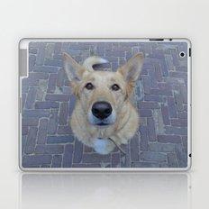Treat? Laptop & iPad Skin