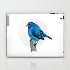 Messenger 005 Laptop & iPad Skin