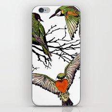 bee-eaters iPhone & iPod Skin