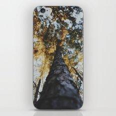 Campin' iPhone & iPod Skin