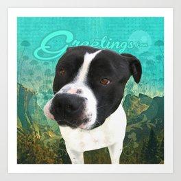 BOB (shelter pup) Art Print