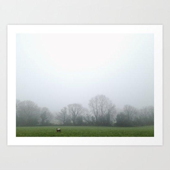 Lone Sheep Art Print