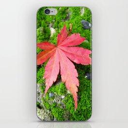 Leaf Zen iPhone Skin