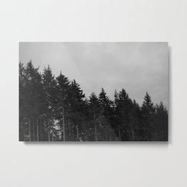 T2 Metal Print
