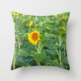 Early Blooming Throw Pillow