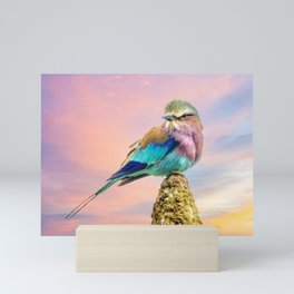 Lilac breasted roller at sunset Mini Art Print