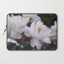 A Walk in the Arb pt. 2 Laptop Sleeve