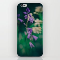 Bluebell iPhone & iPod Skin