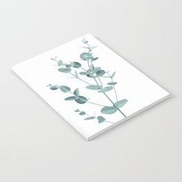 Minimal Eucalyptus Notebook