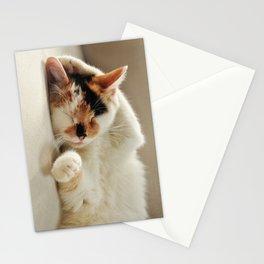 Sunday Feline Stationery Cards
