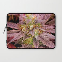 Passionately Purple Laptop Sleeve