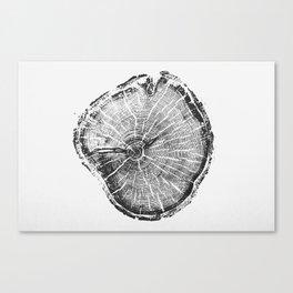 Old Growth Pine Print Canvas Print