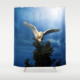 Visibly Superior Shower Curtain