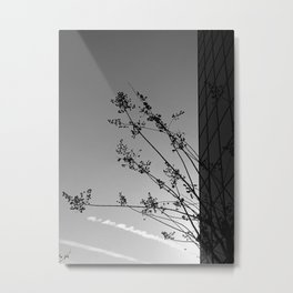 Nature and The City Metal Print