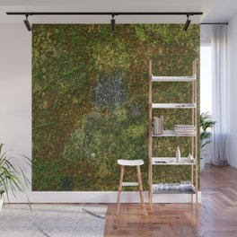 Old stone wall with moss Wall Mural