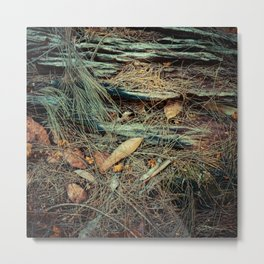 A Peaceful Moment Of Solitude In The Forest Metal Print
