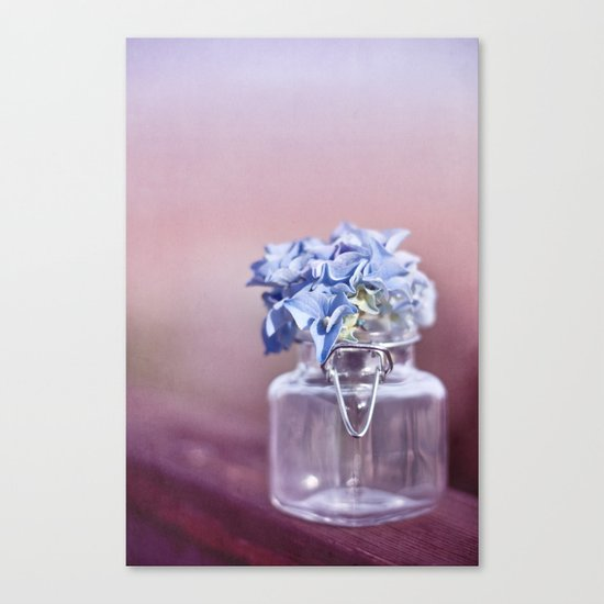HYDRANGEA DREAM Canvas Print