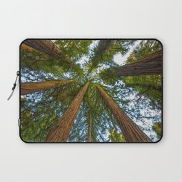 Redwood Forest Canopy Laptop Sleeve