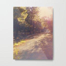 Nature heals Metal Print
