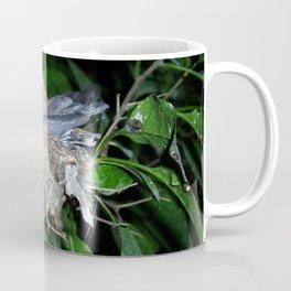 Humming birds on the nest Coffee Mug