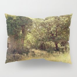 Vintage old forgotten town Pillow Sham