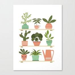 Plant Shelves Canvas Print