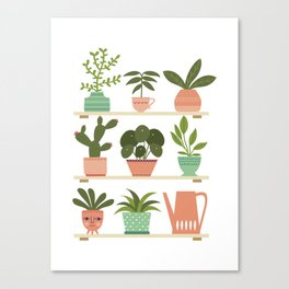 Plant Shelves Canvas Print