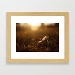Enjoy the sun Framed Art Print